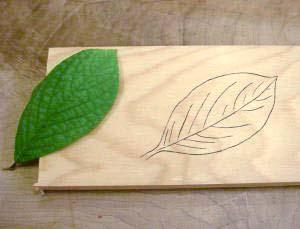 leaf02_3